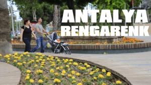 Antalya caddeleri rengarenk
