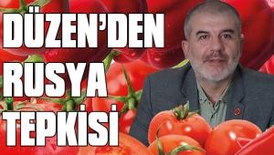 DÜZEN'DEN RUSYA TEPKİSİ
